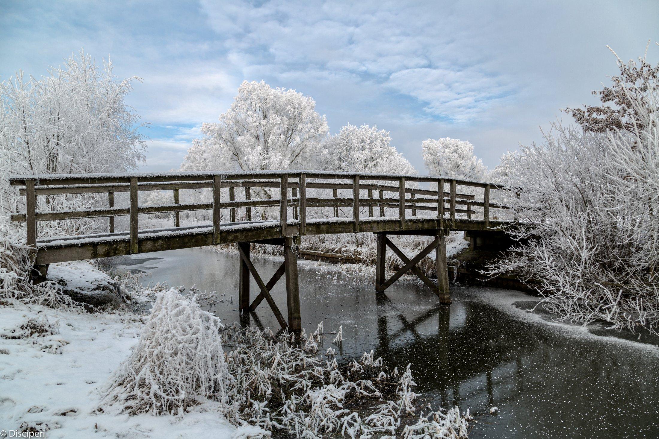 winters tafereel 18-1-2017