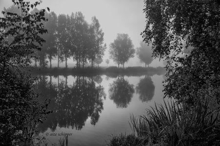 Rietplas, Emmen, 2017