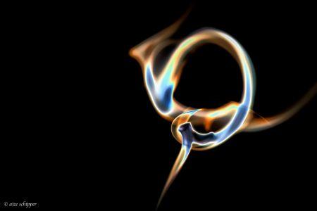rook (2)